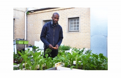 HARVEST TIME: Xolani Ntshinga, a third-year Civil Engineering student, started a vegetable garden using old fridges at Freedom Square Residence to alleviate poverty among his fellow students.